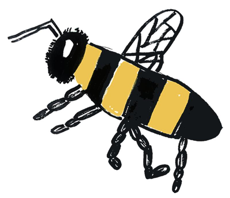 The Hampshire Bee Company Logo